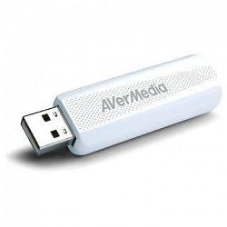 AVerMedia TV TD310